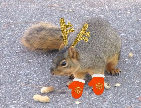 squirrel with mitts and antlers