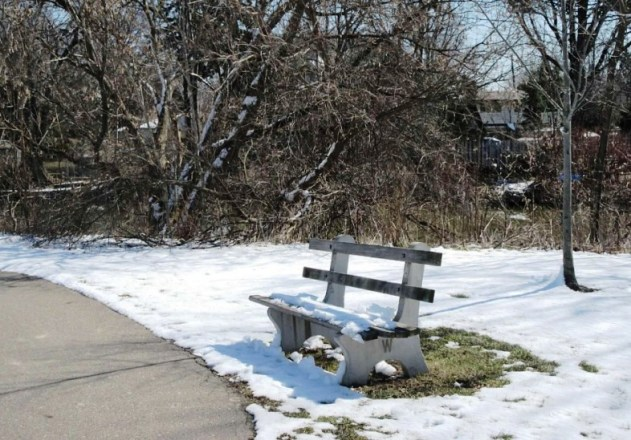 bench with snow