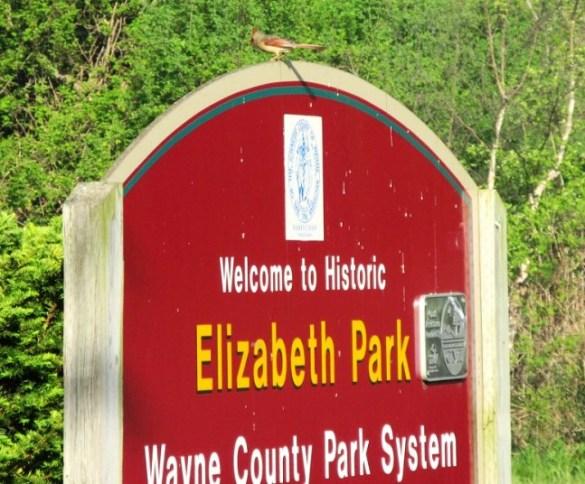 elizabeth park sign