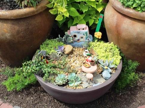 dish garden.jpg