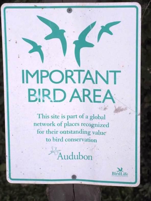 bird sign.jpg
