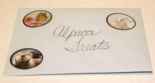 treats envelope