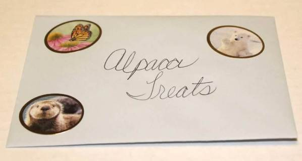 treats envelope