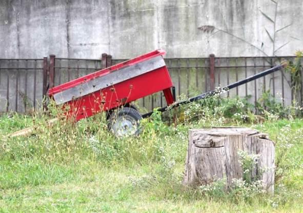 wagon and old stump.jpg