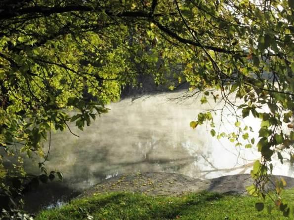Arch in Mist