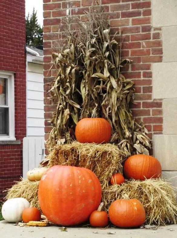 pumpkins on emmons