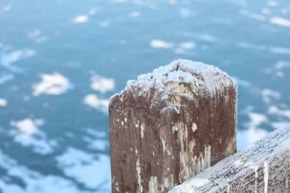 froze post1